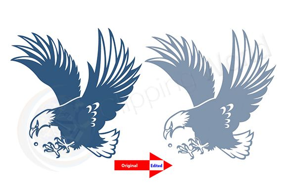 Raster to vector before after image