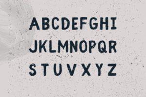 Fibre fonts
