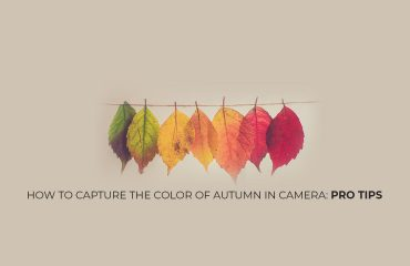 autumn photogrpahy tips
