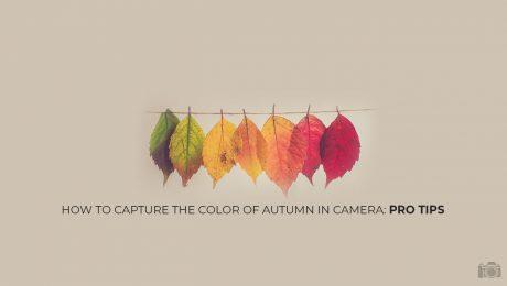 autumn photogrpahy tips