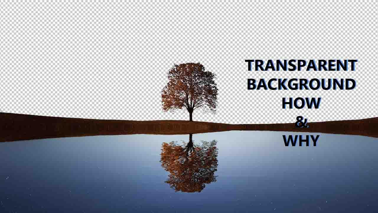 image transparent background