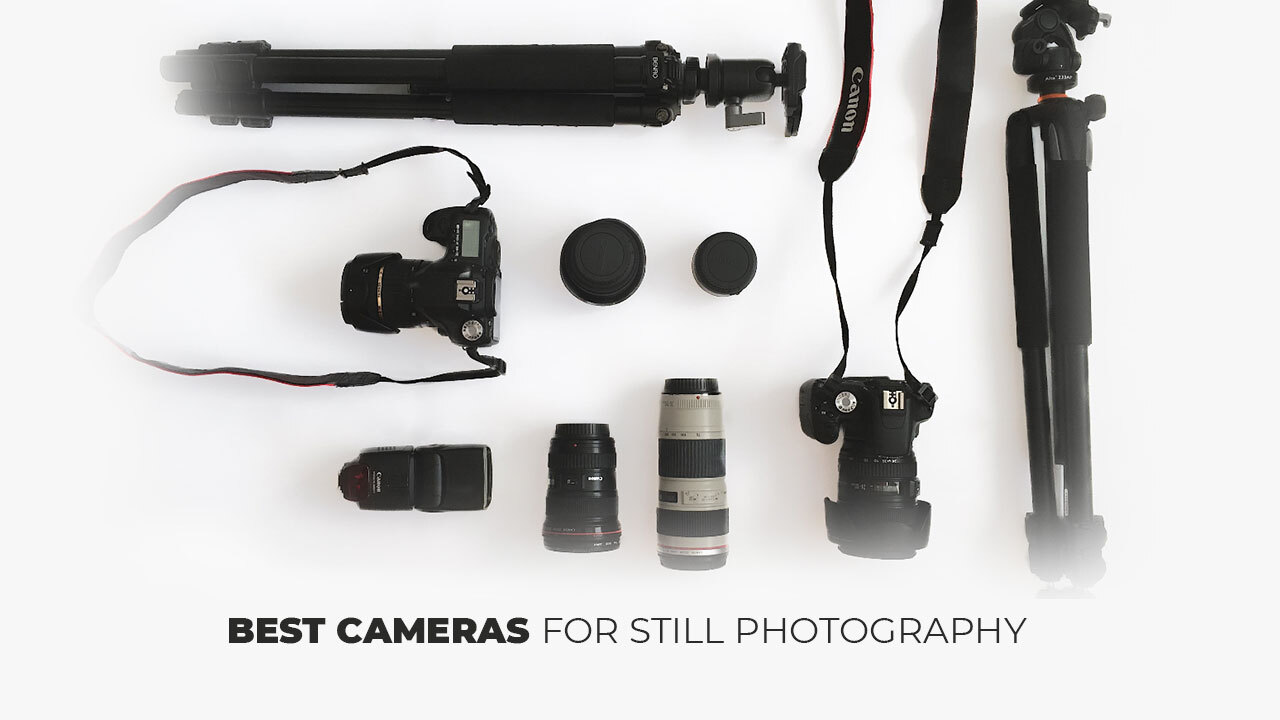 Best Cameras For Still Photography