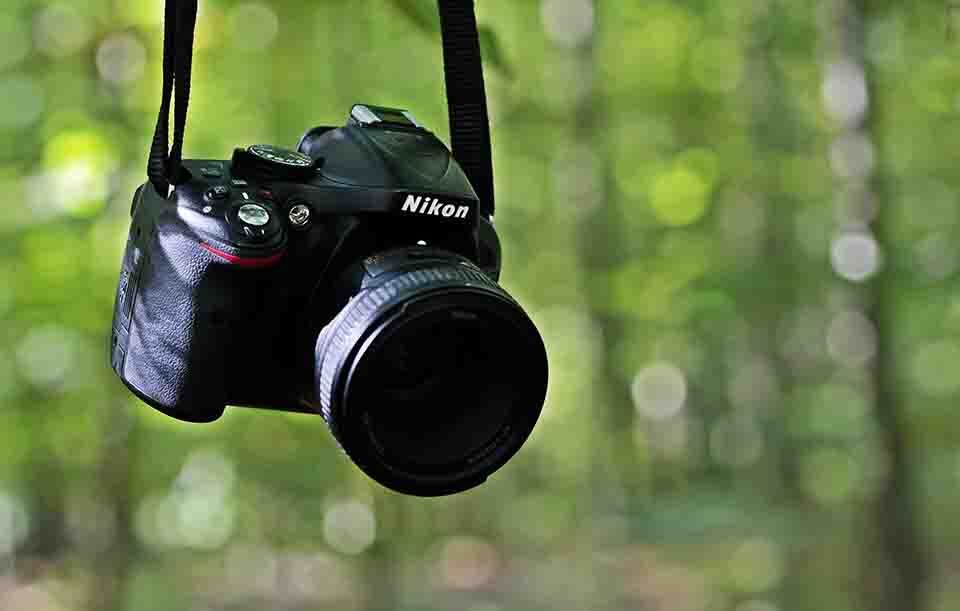 buying a dslr, A Hanging Nikkon DSLR on the forest