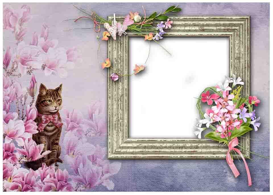 Cat and bird frame