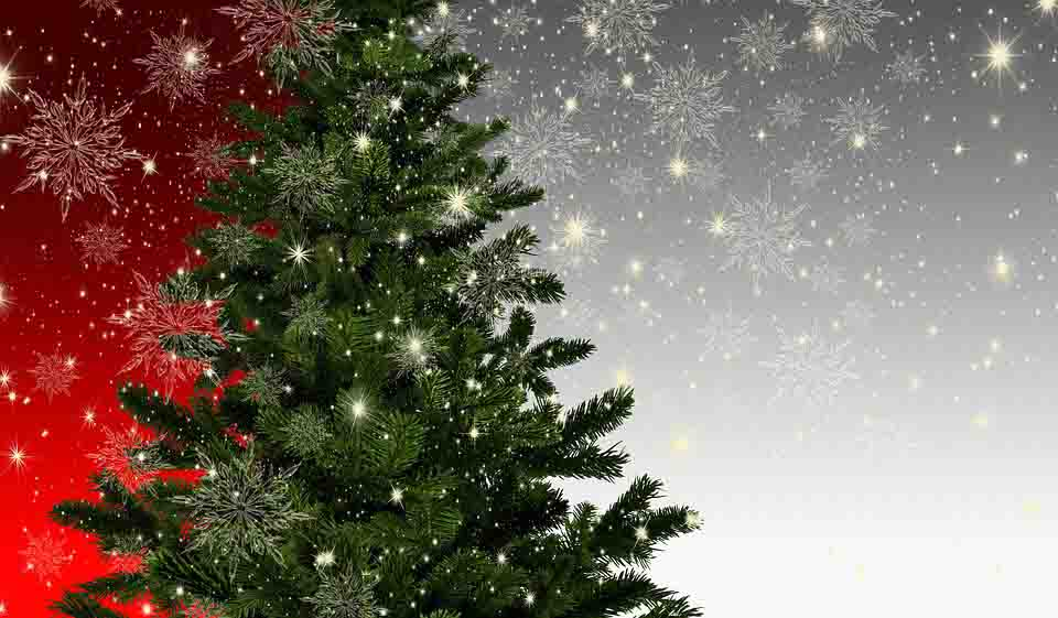 Christmas Tree Editing