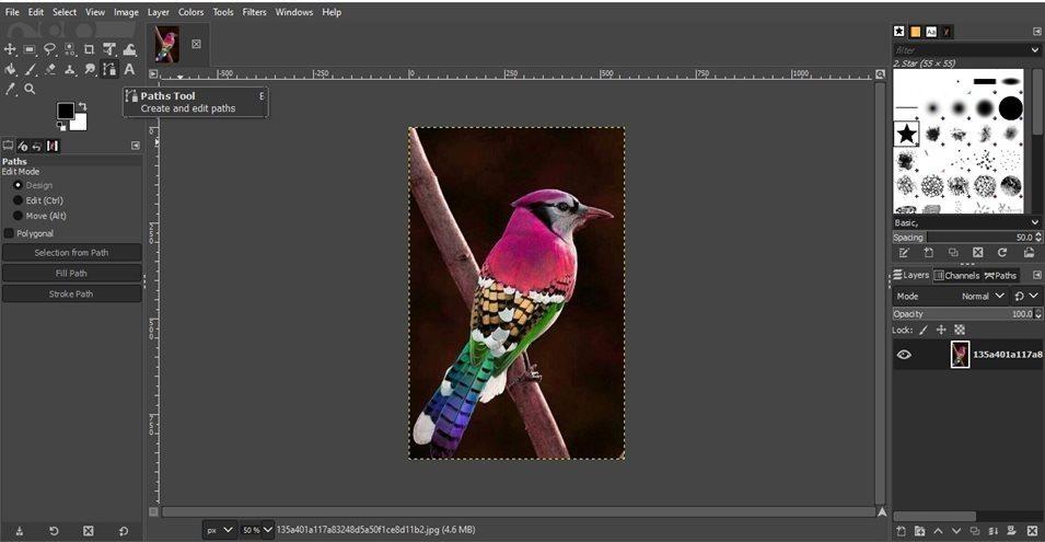 remove background gimp