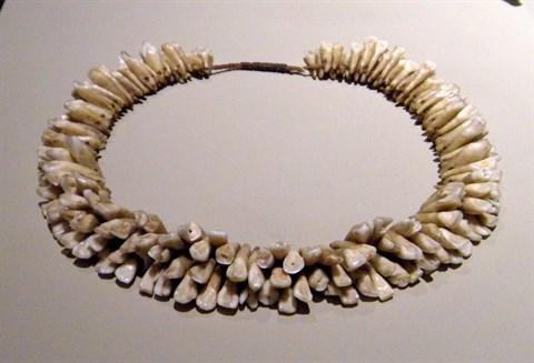 human teeth necklace