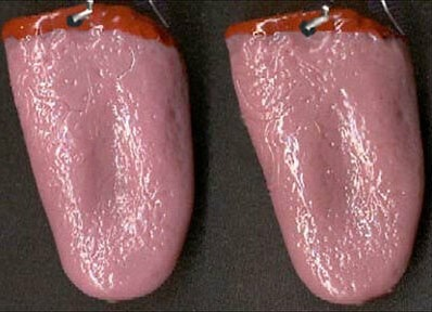 human tongue earrings
