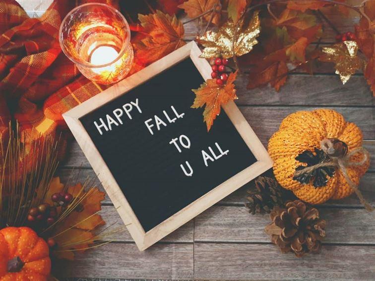 fall-flat-lays